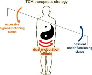 Các ứng dụng của thuyết âm dương trong y học cổ truyền