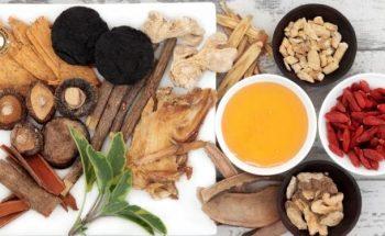3 Bài thuốc chữa sa dạ dày tại nhà lưu truyền trong dân gian