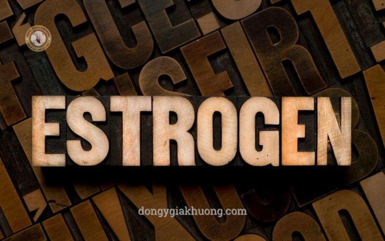 Estrogen là gì? estrogen có vai trò gì